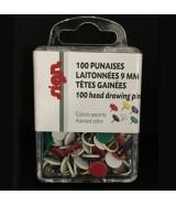 Punaises en laiton ø 11 mm Boîte 100 pièces